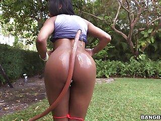Hot ass neighbor Aaliyah Grey teases and gets fucked balls deep